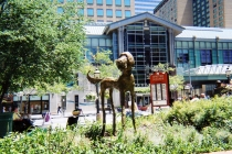 Bailey 58 Inch Height - Denver CO