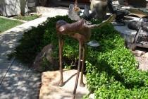 Moose 48 Inch Height - Colorado Residence