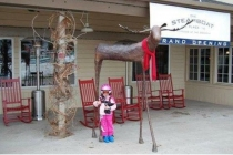 Moose 96 Inch Height - Steamboat Springs CO